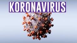 TÄLLAINEN ON SARS-CoV-2 (KORONAVIRUS)