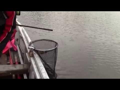 ловля фидером на реке дон в октябре 2014