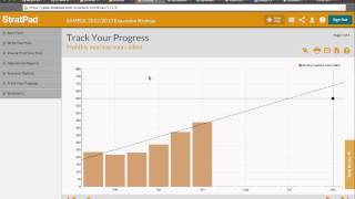 Using StratPad to develop a business plan or in strategic planning