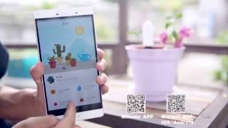 Анализатор почвы и освещённости Xiaomi Smart Flower Monitor