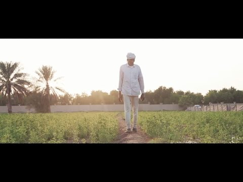 UAE Stories of Change: Green Growth Initiative