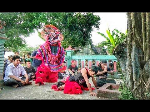 Kejadian Aneh di PUNDEN DAWANG KAWAK---Singo Barong DEVIL CREW mengajak Pengatin Pria