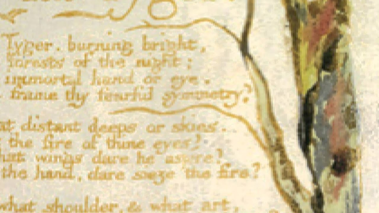 william blakes the tyger The tyger (from songs of experience) by william blake tyger tyger burning bright in the forests of the night, what immortal hand or eye could frame thy fearful.