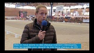 Jeunes Talents Dressage 2018 - Isabell Werth clinic