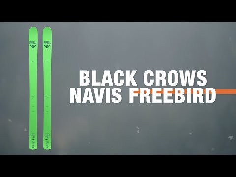Black Crows Navis Freebird 2019-2020 Ski Review   Ellis Brigham