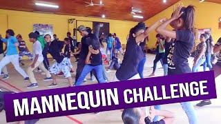 MANNEQUIN CHALLENGE + IRAJ - NACHNA DaNcE || COOL STEPS #MannequinChallenge