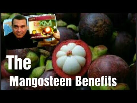 MX3 Mangosteen Super Food Review