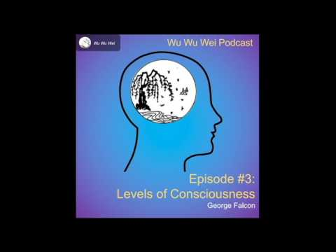 Wu Wu Wei Podcast  Episode #3 - Levels of Consciousness