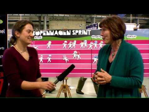 The Stupid Show - Episode 1 -  Interview -  Jane Davidson