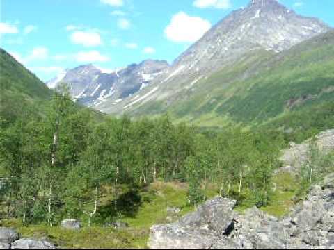 Arctic Summer, Steindalen, Lyngen Alps, Northern Norway