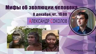 Мифы об эволюции человека - Александр Соколов - стрим для сообщества Discovery
