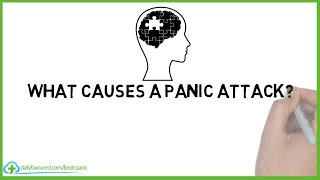What Causes Panic Attacks & How to Deal With Anxiety Attacks