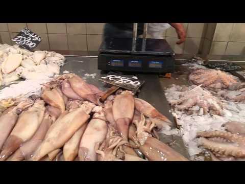 Fish market - Tunisia