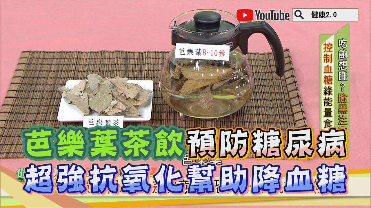 芭樂葉茶飲 預防糖尿病 超強抗氧化幫助 降血糖 健康2.0 精華