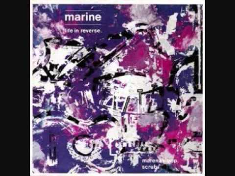Marine Life In Reverse