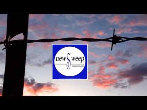 "Newsweep - ""Your Life, Your World, Your News"""