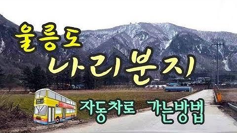 [울릉도여행 길잡이]일주도로로 나리분지까지 자동차로 가는방법?! ,Naribunzi, a way to get to the car.,UlleungdoTV