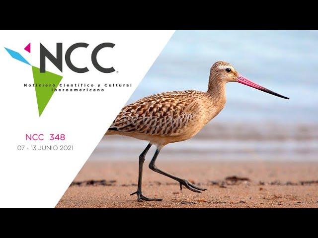 Noticiero Científico y Cultural Iberoamericano, emisión 348. 07 al 13 de junio del 2021