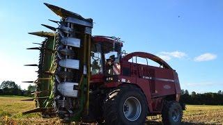 ☆Koszenie kukurydzy 2016 na dwie Sieczkarnie!☆ //CASE//Landini//Fendt//3xJohn Derre//