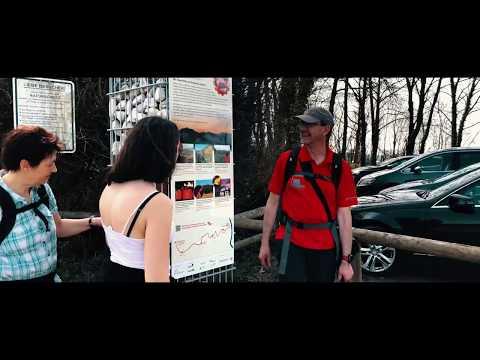 Wandern rund um den Rodderberg