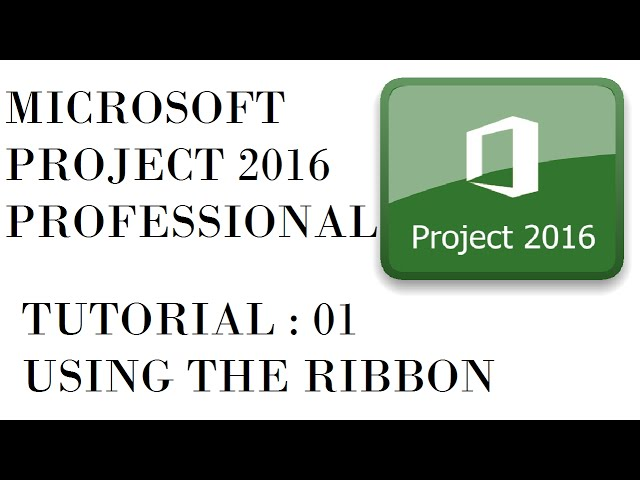 Microsoft Project 2016 Professional Beginners To Advanced