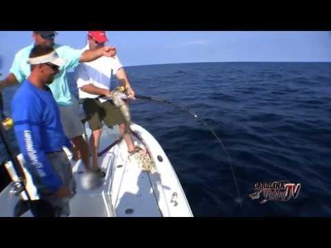 Carolina Fishing TV - Season 2/11 - Mixed Bag Bottom Fishing Fun!