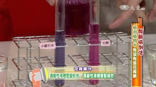 【生活裡的科學】20150611 - 紅得發紫花青素