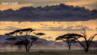 Mobi Dixon - Sivuleleni (feat. MP Native)