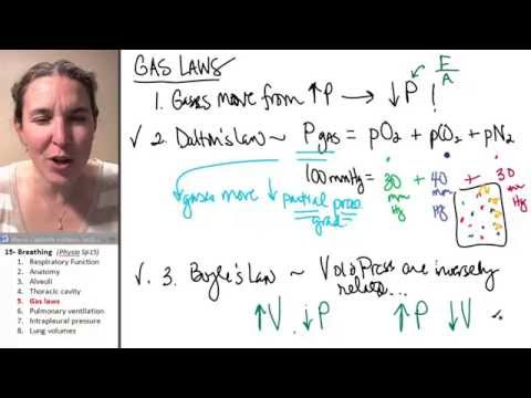 Breathing 5- Gas laws