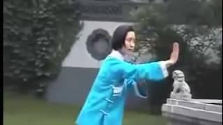 Tang Lang Yu Hai Quan (Mantis)