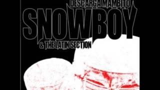 Mambito   Snowboy The Latin Section
