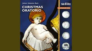 Christmas Oratorio, BWV 248, Pt. 3: No. 25, Rezitativ Evangelist. Und da die Engel von ihnen...