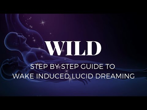 the wild way to lucid dreaming pdf