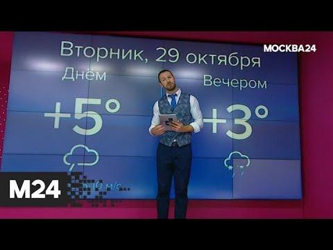 """""""Погода"""": небольшие дожди ожидаются в столице - Москва 24"""