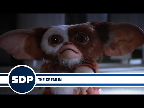 The Gremlin | The Steve Dangle Podcast