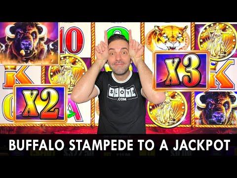 Buffalo Stampede to a Jackpot 💰 Only Buffalo Slots at Choctaw Casino #ad
