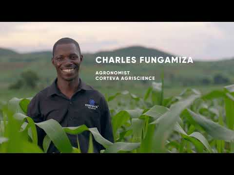 Driving Economic Growth with Smallholder Farmers | Corteva Agriscience™