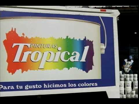 Pinturas Tropical.avi - YouTube