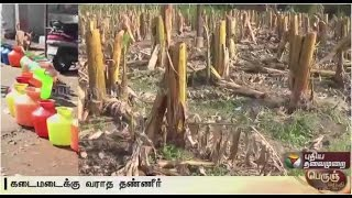 Farmers suffer without water for agricultural lands in Avinashi | Special report
