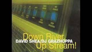 David Shea & DJ Grazzhoppa - In Station