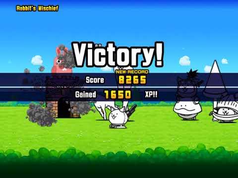 Pla6ing cat battle