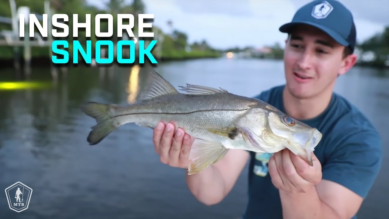 Inshore Saltwater Fishing Tips To Catch More Fish On Artificial Lures