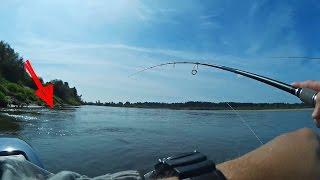 Рыбалка на Спиннинг Ловлю на Спиннинг Щуку и Окуня Кренками Супер Рыбалка (Predator Fishing) -MF №72(Как поймать щуку, окуня и язя на спиннинг воблерами кренками? Как мы провели второй день на реке Вятка в..., 2016-08-14T15:24:51.000Z)