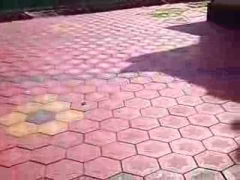 Beau Hexagon Interlock Pavers Grip On Tiles Thrissur