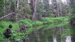 Рыбалка на таёжной речке 178