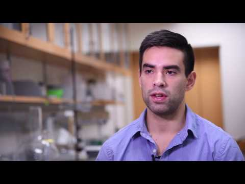 Alberto Guerra, Biotechnology Training Program Trainee