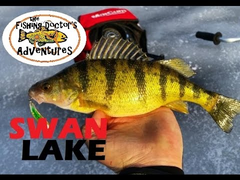 Swan Lake Perch Ice Fishing Vernon BC
