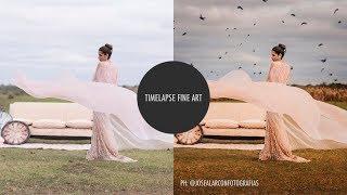 Crop - Timelapse Fine Art - Birds