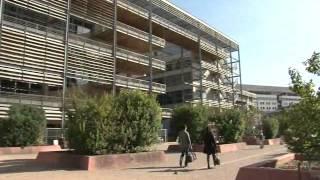 Французский университет Монпелье (Universite Montpellier)