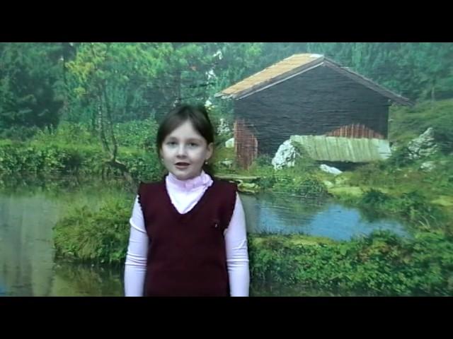 Изображение предпросмотра прочтения – КристинаКондратьева читает произведение «Мартышка и зеркало» И.А.Крылова